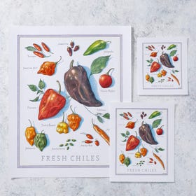 Cook's Illustrated Unframed Print: Chiles