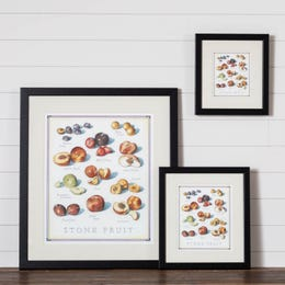 Cook's Illustrated Framed Print: Stone Fruit